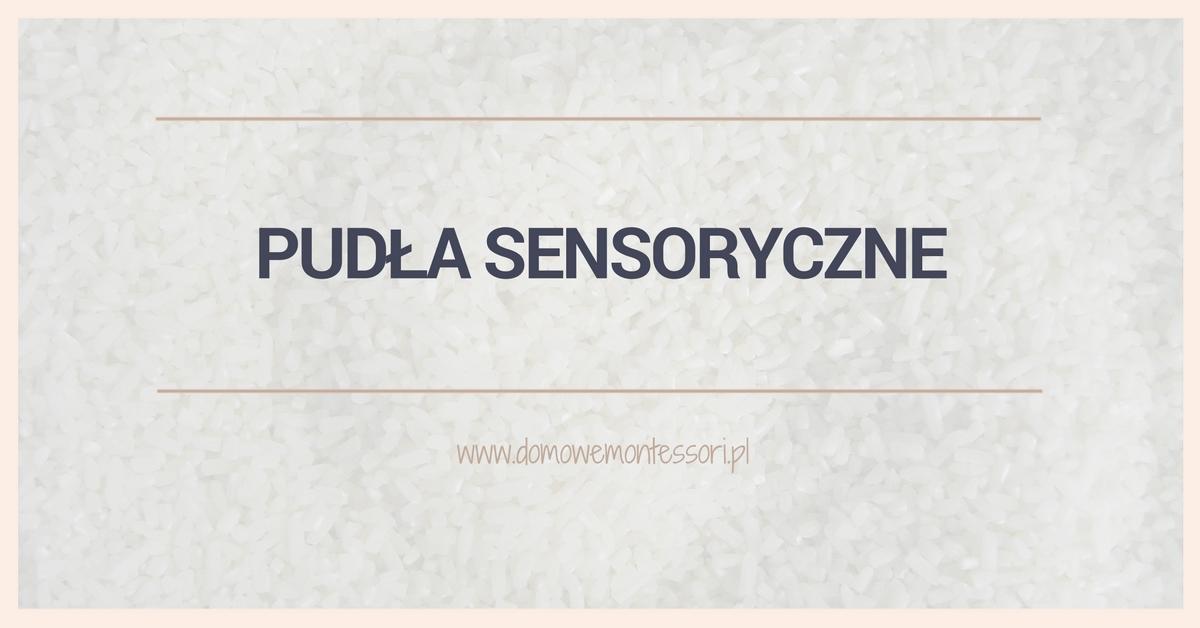 Pudła sensoryczne