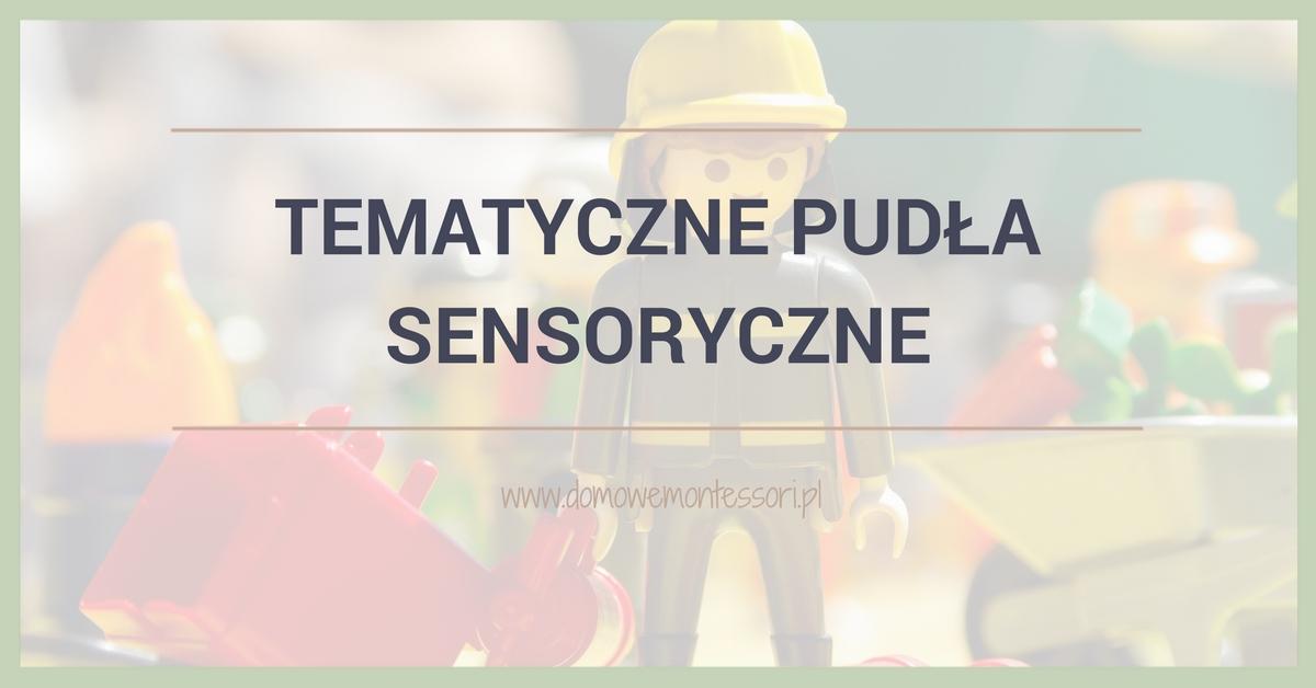Tematyczne pudła sensoryczne