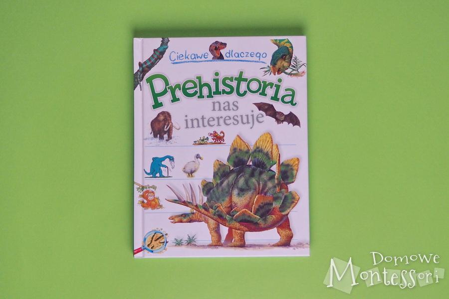 Książka - Prehistoria nas interesuje