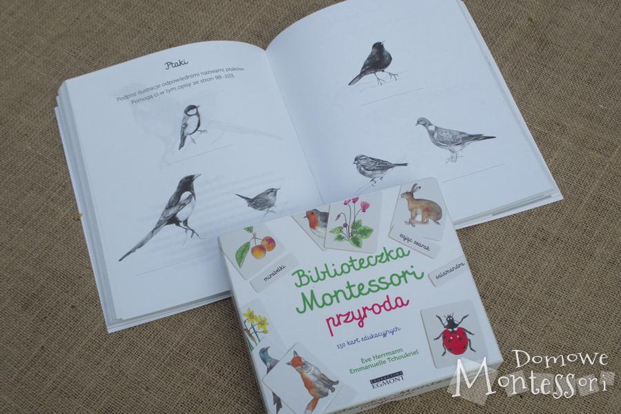Książka z ćwiczeniami i karty Przyroda