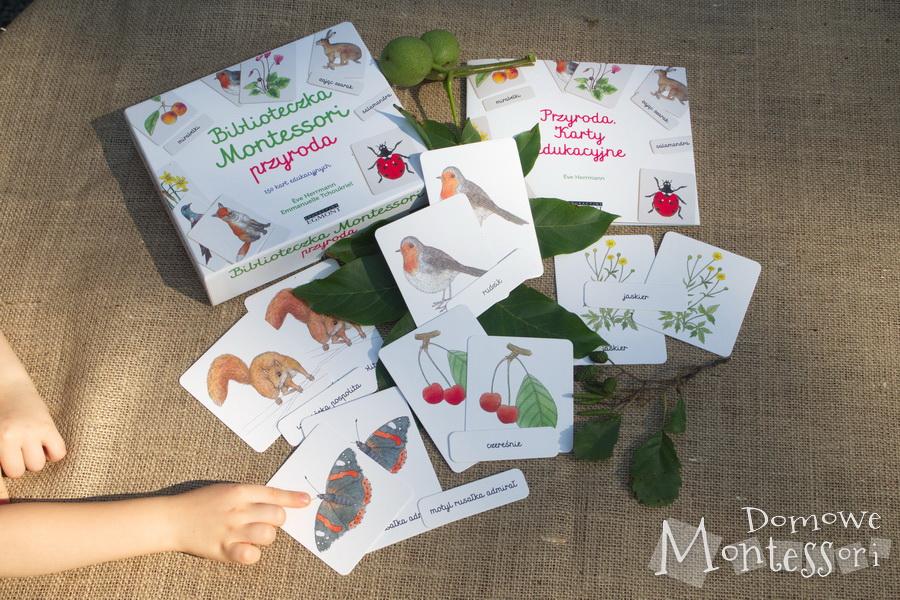 Karty Przyroda podzielone na zwierzęta leśne, ptaki, owady, kwiaty i owoce