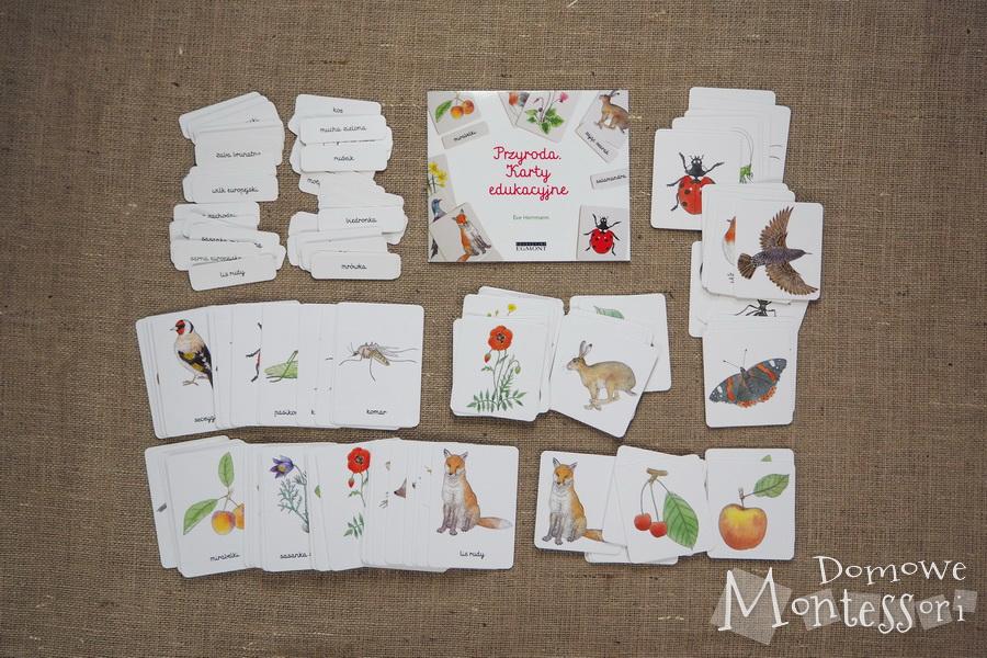 Karty Przyroda - zawartość pudełka