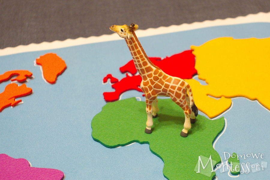 Figurki zwierząt namacie świata